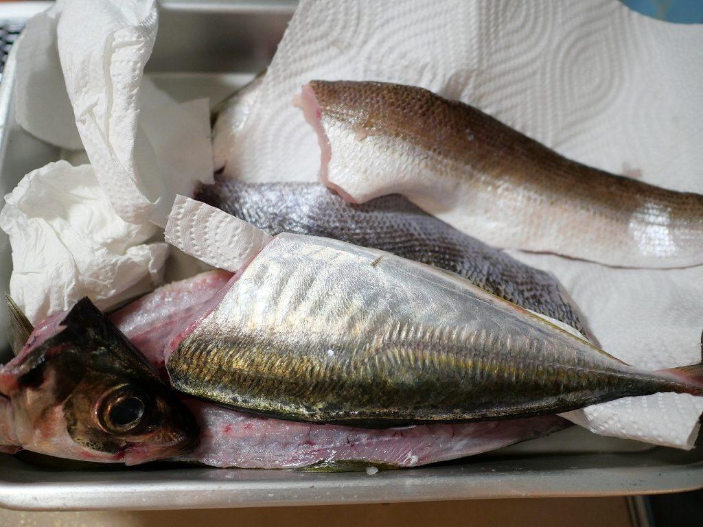 サバいた魚